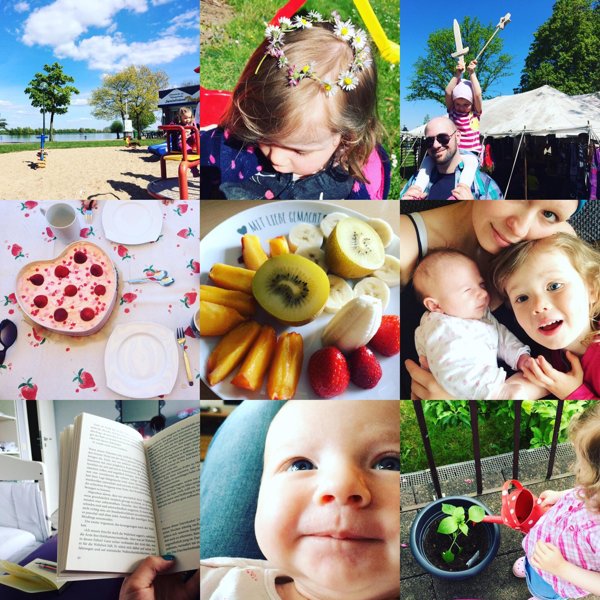 Monatsrückblick Collage Mai 2016