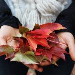 Herbstliebe - 10 Dinge, die ich diesen Herbst noch machen möchte