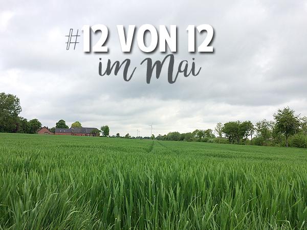 12 von 12 im Mai