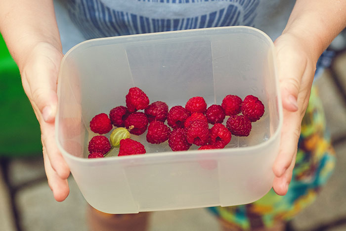 Kinder vegan ernähren | klitzekleinedinge