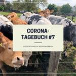 Corona-Tagebuch #7 | Die siebte Woche #coronaferien