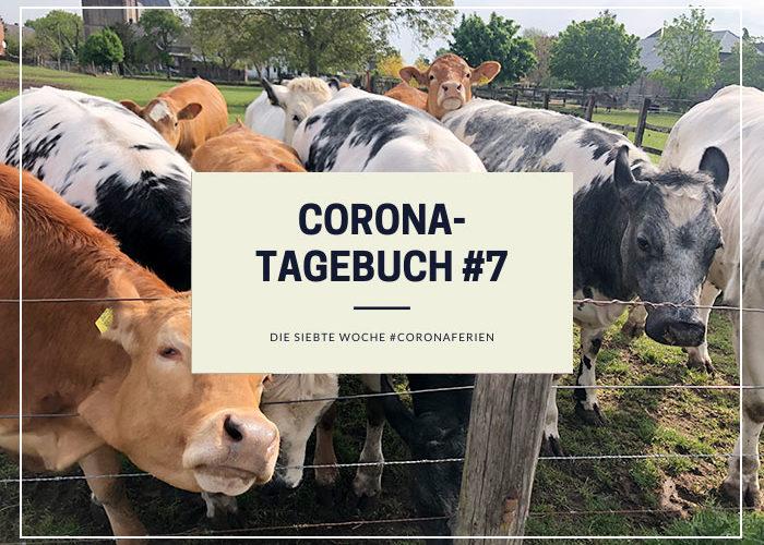Corona-Tagebuch #7