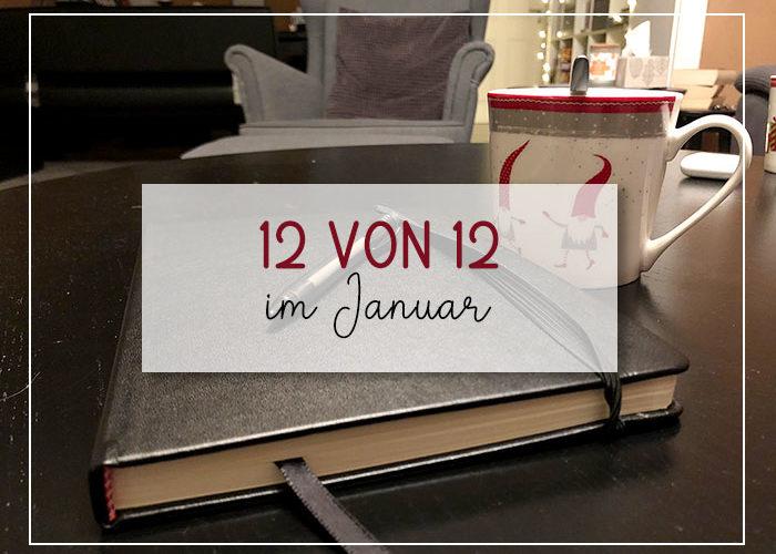 12 von 12 im Januar 2021 | klitzekleinedinge